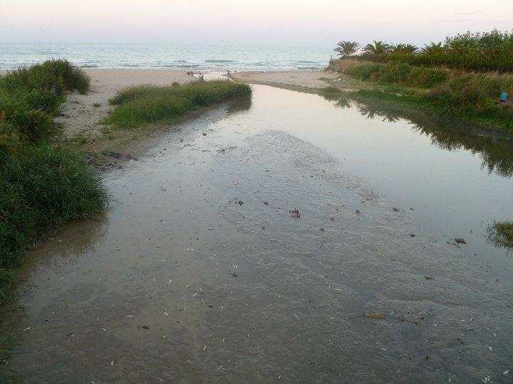L'unione fa la forza per il trattamento di disinquinamento della foce del fiume Vibrata